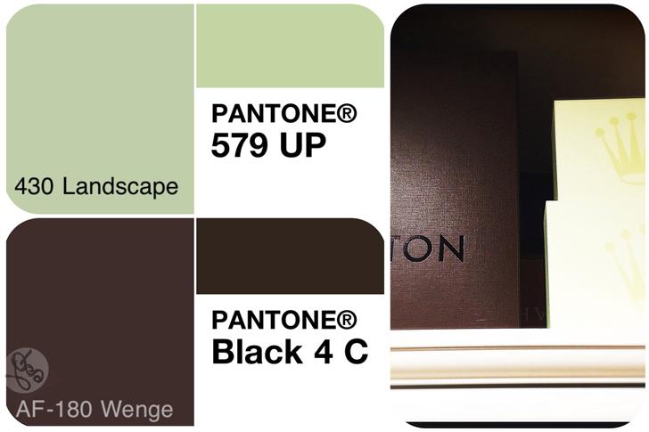 Wenge AF 180 Black 4 C  430 landscape  Pantone 579 UP