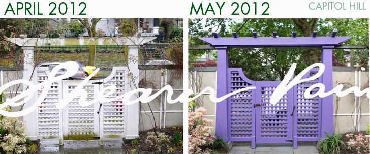 purplegate