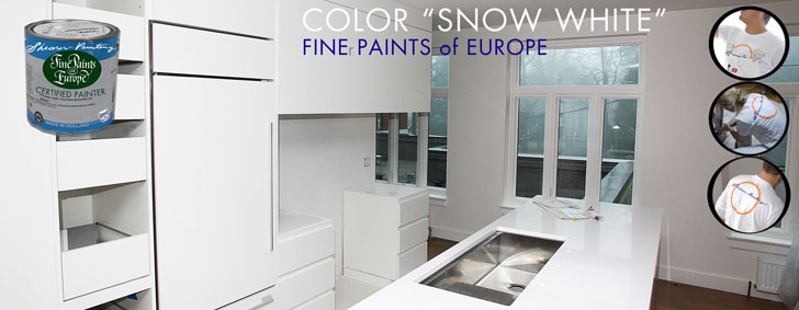 snow-white-color-from-finer-paints-of-europe