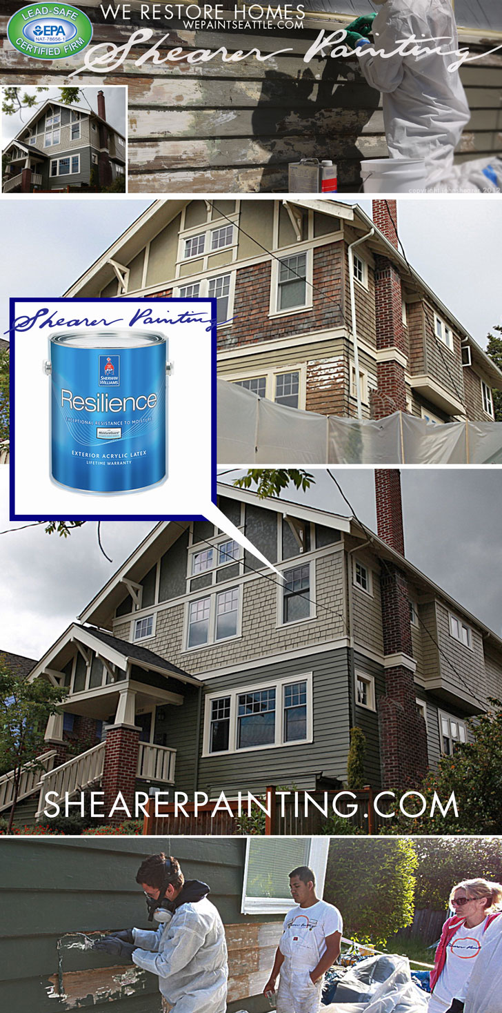 Resilience-Paint-Sherwin-Williams