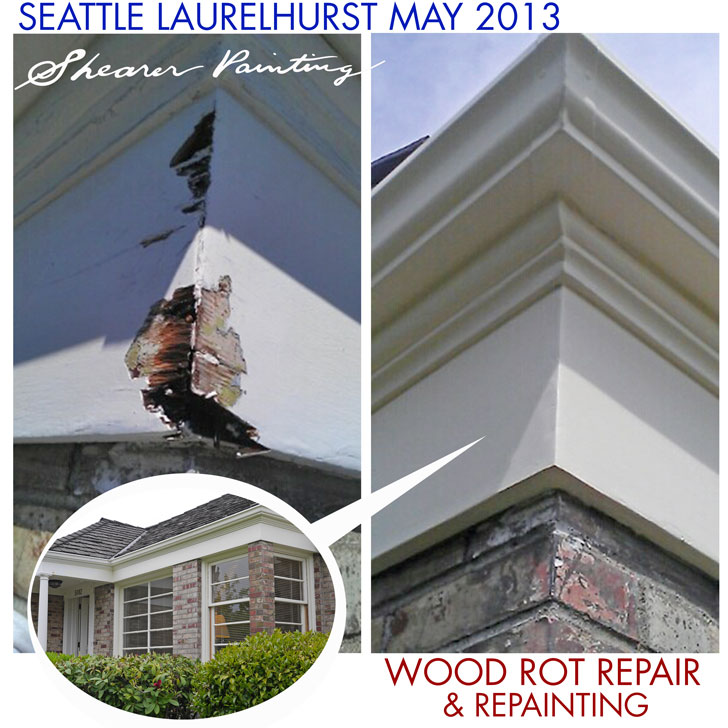 Wood-Rot-Repair